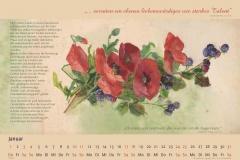 Kalender.Lily Unden 2015.Deckblatt-3